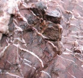 Foto de piedra 9