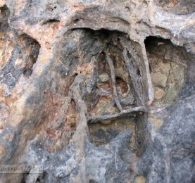 Foto de piedra 6