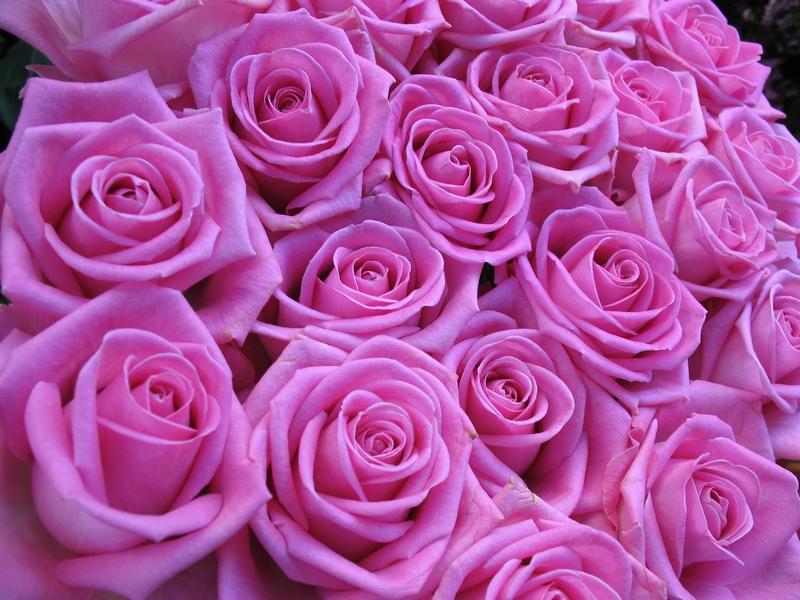 Un ramo de rosas...rosas
